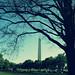 Washington Monument - Washington, DC  (Explored!)