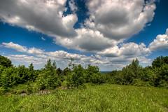 Just Clouds (Miroslav Petrasko (hdrshooter.com)) Tags: trees clouds canon landscape woods tripod sigma 1020mm bratislava devinska scenry 450d opustena vojenska kobyla zakladna theodevil