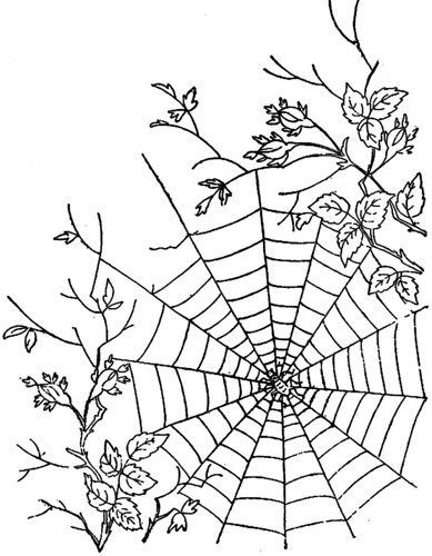 1886 Ingalls Spiderweb in Roses