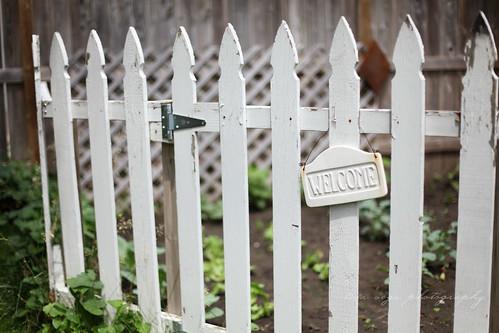 Tanya's garden