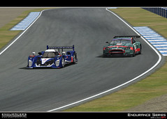 Endurance Series mod - SP1 - Talk and News (no release date) - Page 23 4771349334_37403ba842_m