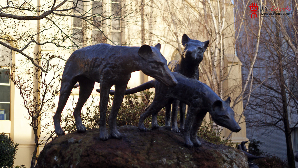 Sculpture Tasmanian TIger