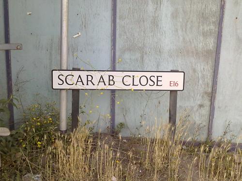 scarab close