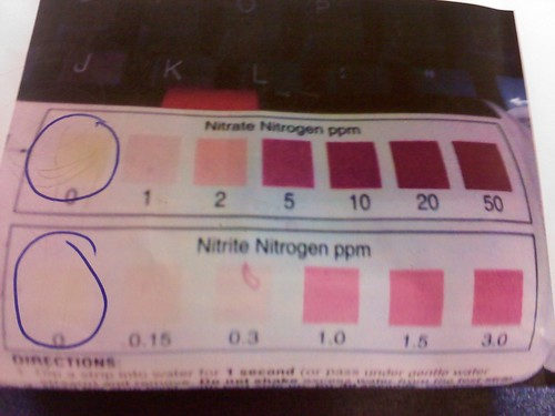The results of the nitrate and nitrite testings both were zero.