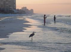 6 24 10 035 (Lolo2182) Tags: ocean sunset beach sunrise canon fishing waves crane balls casio fl destin exilim tar s5is
