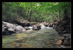 Regreso inesperado (Jashir) Tags: water ro canon river spain agua asturias seda asturies 50d nd8 piloa tamronspaf1750mmf28xrdiiildasphericalif canoneos50d pesanca
