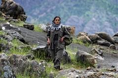 "Pkk ""Kurdistan workers party"" guerrilla (KecaEzidiKurd) Tags: horizontal iraq qandil"