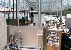 Algae Food (jurvetson) Tags: green mobil lajolla greenhouse labs opening algae sgi exxon co2 annoucement exxonmobil bubblers syntheticgenomics cleantech fdiamontheboard