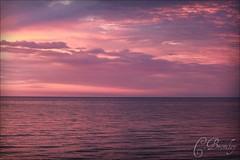 Violet Sky pt.5 1/2 (chelseabromley) Tags: sunset sky nature water night clouds evening twilight purple michigan lakemichigan waters cloudsstormssunsetssunrises
