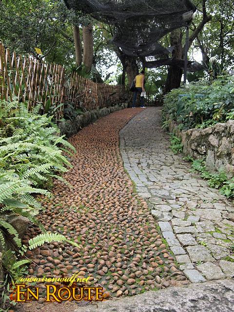 Foot Massage Path