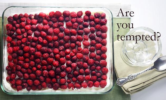 raspberry-tiramisu-tx