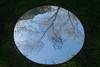 20100711_7293 Meniscii by Julia Davis (williewonker) Tags: circle mirror australia victoria round mansion werribee wyndham helenlempriere werribeepark juliadavis meniscii helenlemprierenationalsculpturalaward nationalsculpturalaward