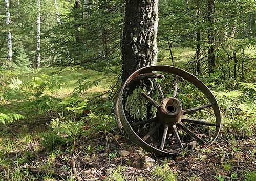 wheel2337