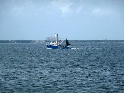Shrimp Boat seen from Mid-Bay Bridge