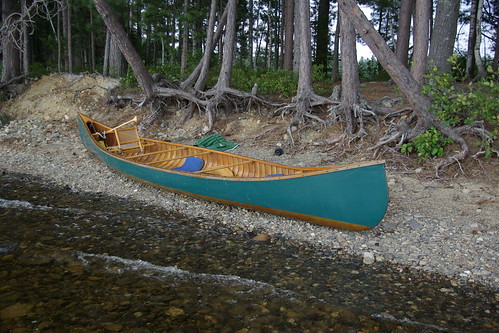 canoe and roots