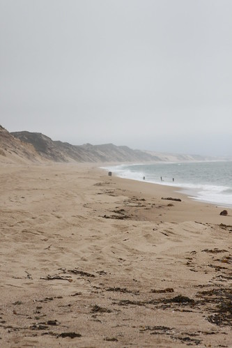 Foggy Day at The Dunes