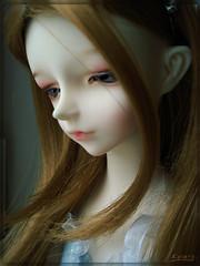 DSC09950 (Lau-rain) Tags: doll bjd dollzone fenyo