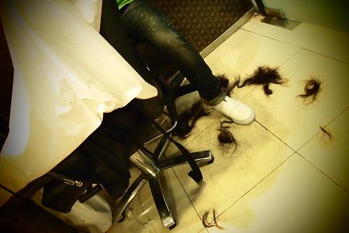 SC's New Hair