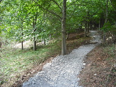 Aug_01_Sun_Trail_Build 042