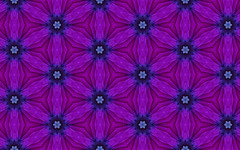 213-0801 Layered Flowewr Scope with Blue Star Flower Centers - For August 1 2010 (Crystal Writer) Tags: pictures original light abstract color colour reflection colors sisters project tile creativity mirror design colorful pattern colours image crystal pics unique creative picture optical pic kaleidoscope mandala images symmetry christian creation illusion tiles kaleidescope mirrored writer 365 write create colourful capture tessellation tessellations opticalillusion eyecandy pleasant tiling kaleidoscopic kaleidoscopes 2010 writes kalidascope kaleidascope mirrorimages siliconmirror 365project kaleidoscopesonly crystalwriter calidascope