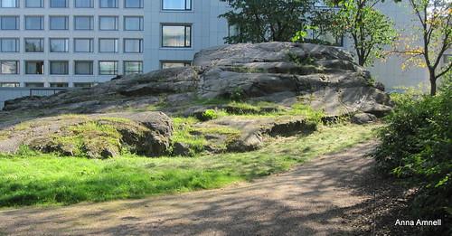 Hotellin piha Töölössä by Anna Amnell