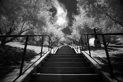 Barnsdall Stairway ( Infrared ) Explored... (-william) Tags: cool save3 save7 save8 delete save save2 save9 save4 save5 save10 uncool save6 frankloydwright savedbydeletemeuncensored cool5 cool3 cool6 cool4 d700 cool7 barndall uncool2 uncool3 iceboxcool cool2forrebecca812