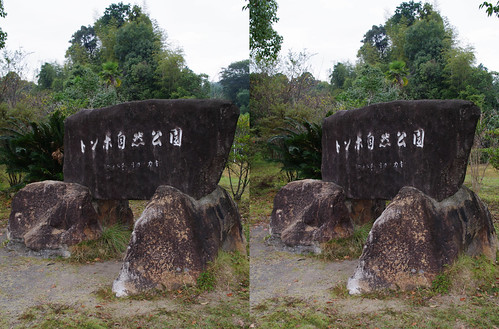 Dragonfly nature park, Shimamto city, 3D parallel view