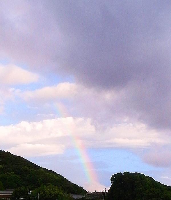 虹が見えた