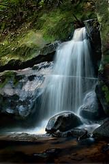 Katoomba Falls Creek ...... (Bruce Kerridge) Tags: longexposure nature water forest waterfall interesting nikon stream sydney australia bluemountains weekly katoomba leura d700 nikond700