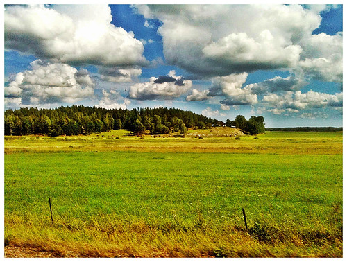 august field sweden