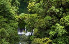 northern Taiwan ,HDR (sunnaquair) Tags: green forest rainforest taiwan waterfalls vegetation formosa northern yilan thick crossisland