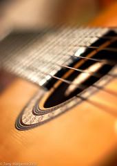 Schramm Guitar (Tonym1) Tags: music macro photography guitar