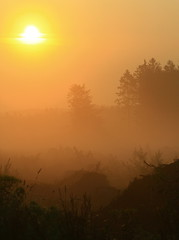 August morning Hike.... (rolfspicture) Tags: morning light sun nature fog forest sunrise landscape mood sauerland wildernes