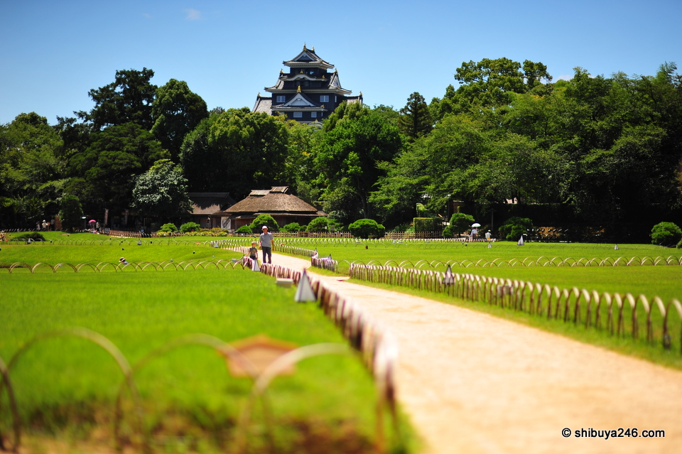 Okayama Castle in the distance. Like the greenery here