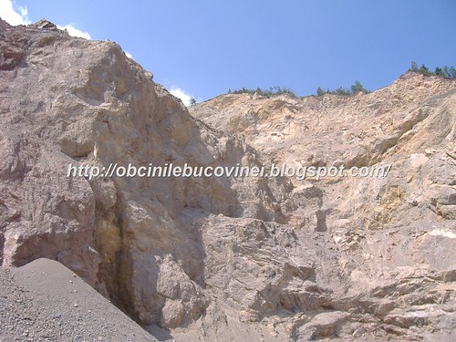 Rezervatia geologica de calcare  triasice Paraul Cailor  (1)