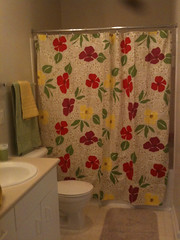 Happiness is found in a shower curtain