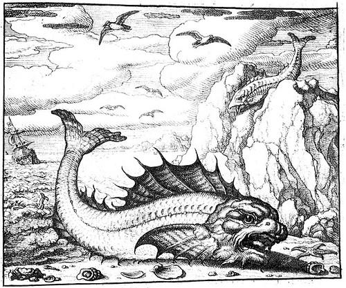 delphinus et smaris