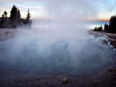 West thumb,Yellowstone national park (norvegia2005sara) Tags: park trip travel vacation usa west water america spring united basin steam national thumb yellowstone states wyoming geyser westthumb 2010 yellowstonelake norvegiasara usa2010 gettyvacation2010