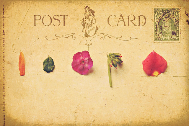 post card itsy bitsy collage