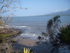 trilhas em ilha comprida,.
