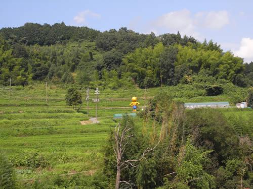 夏の明日香村-05