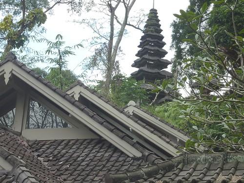 Bali-Ubud (138)