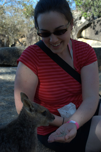 Feeding rock wallabies at Granite Gorge