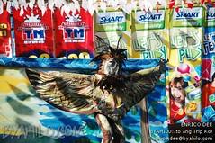 kadayawan sa davao festival 2010 0615 (Enrico_Dee) Tags: festival fiesta philippines davao mindanao magallanes kadayawan byahilo dabao cotabato tboli manobo surallah tausug mandaya matigsalog