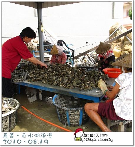 白水湖漁港2-2010.08.19