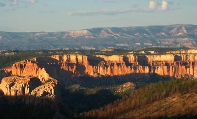 Nature at Bryce Canyon