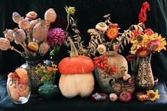 Still Life Volunteers (panga_ua) Tags: flowers stilllife plants glass vegetables metal ceramics things repetition setting vases naturemorte participants bodegones raysofsummer stilllifevolunteers