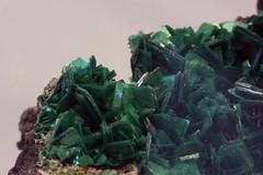 Torbernite (Ron Wolf) Tags: nature crystal mineral radioactive congo geology earthscience mineralogy torbernite tetragonal