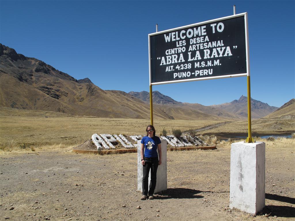 Der Diplombär in Peru