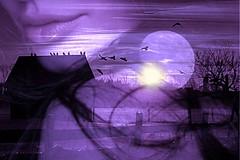 Sigue dándome fuerzas, pero no me fuerces a seguir dando... (conejo721*) Tags: argentina atardecer casa amor palabras mardelplata sentimiento poesía poema rostrodemujer conejo721